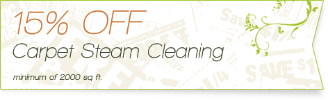 Carpet Cleaning Coupons | 15% off carpet steam cleaning | Guarantee Green