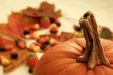 Green Halloween | Guarantee Green Blog